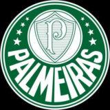 Grupo do Palmeiras Whatsapp